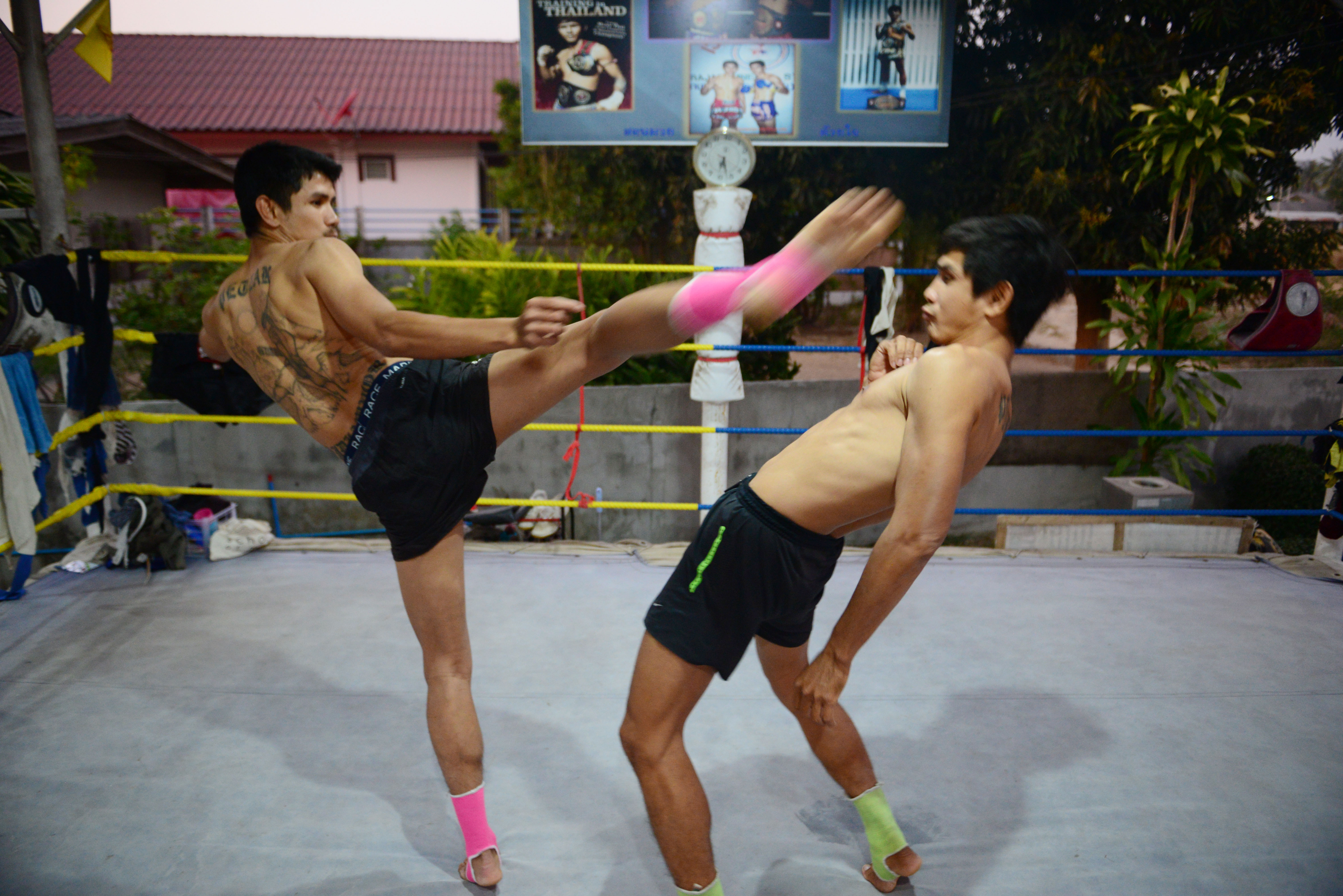 day 7 the world�s best muay thai fighters fighting